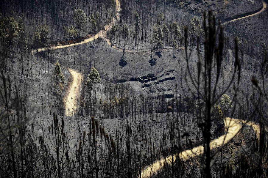 Paisajes en negro en Portugal tras el incendio