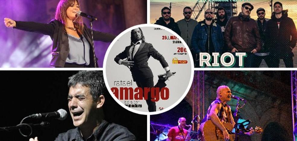 Música indie, flamenco y mucho rock para el final de San Juan