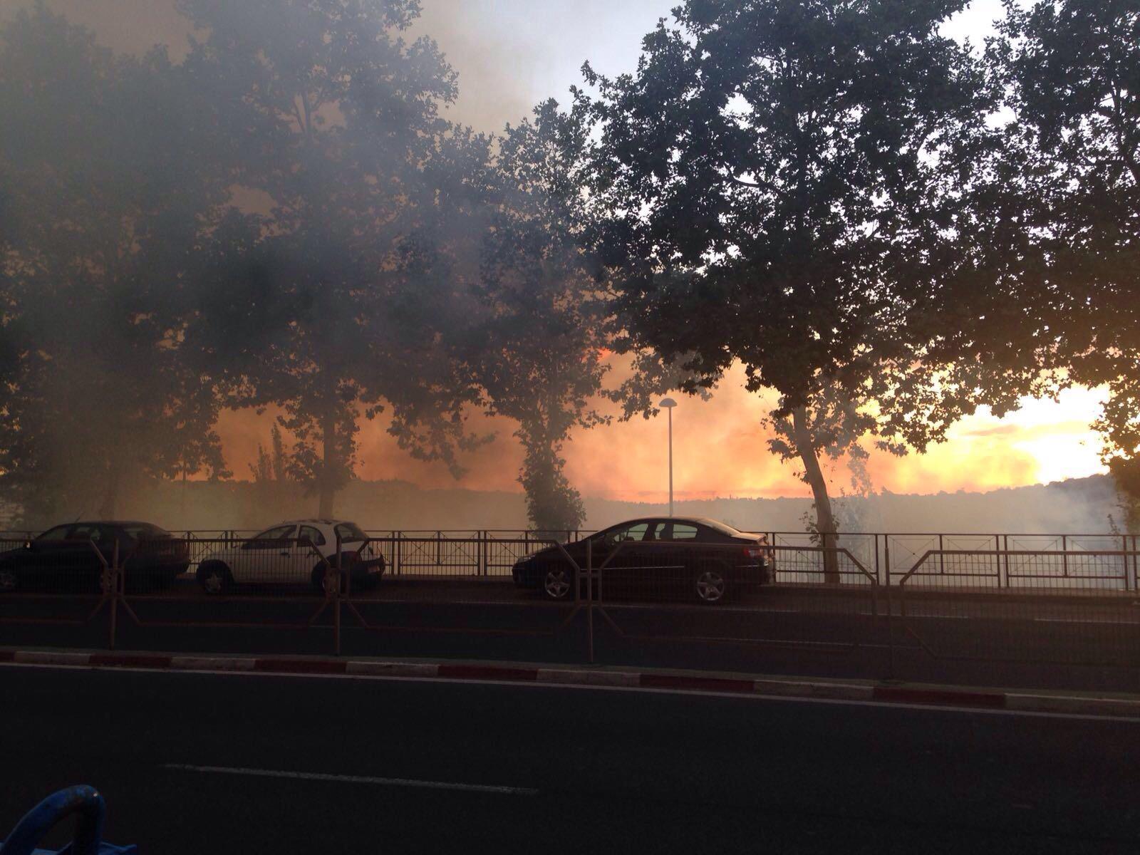 Incendio en el Parque del Príncipe de Cáceres