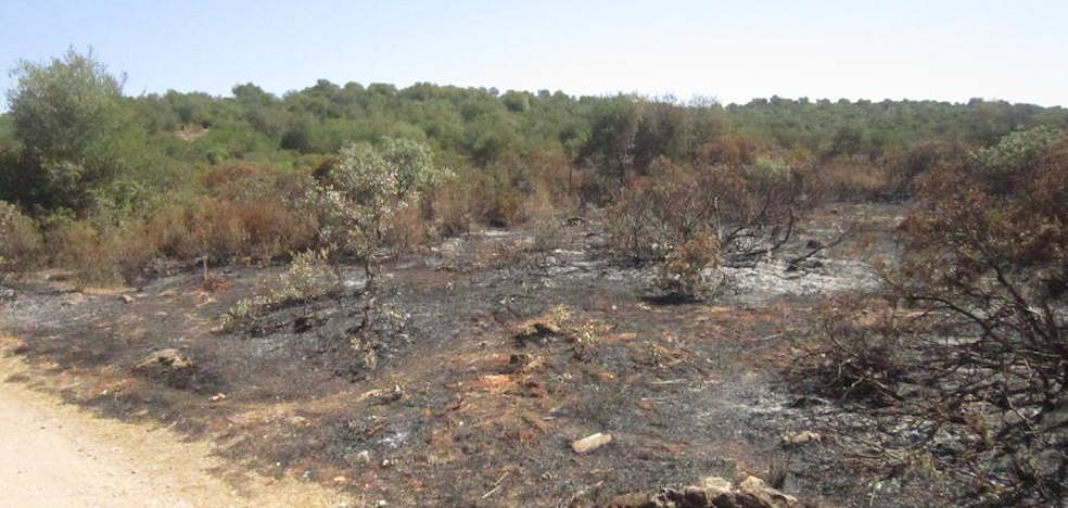 Un incendio quema una hectárea y media en la finca del Rebellao de Valverde de Leganés