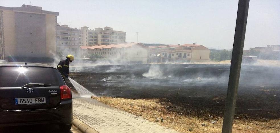 Incendio de pastos en los Castellanos