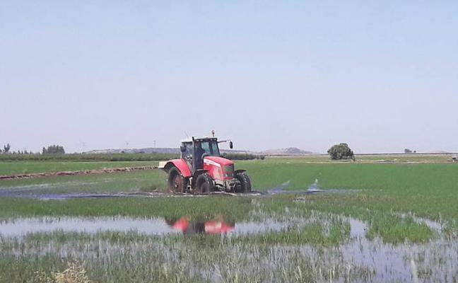 El 'Plan Renove' para maquinaria agrícola contará con cinco millones de euros