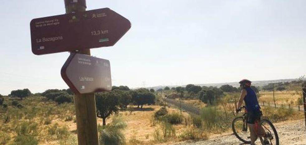 Cáceres insta a restablecer la línea ferroviaria Vía de la Plata