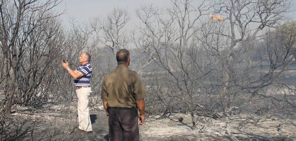 Nuevo incendio en la finca del Rebellao de Valverde de Leganés