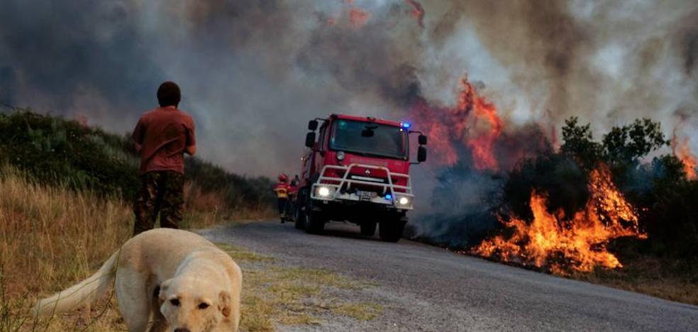 Olor a humo en la región por dos incendios en el centro de Portugal