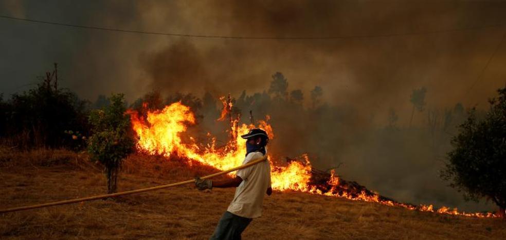 Medios del Infoex luchan contra el fuego en Vila Velha de Rodão