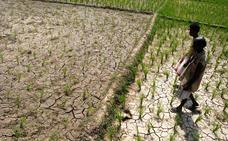 El cambio climático amenaza con volver inhabitable el sur de Asia en 2100