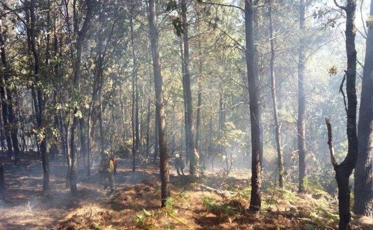 El Infoex sofoca un incendio forestal en San Martín de Trevejo