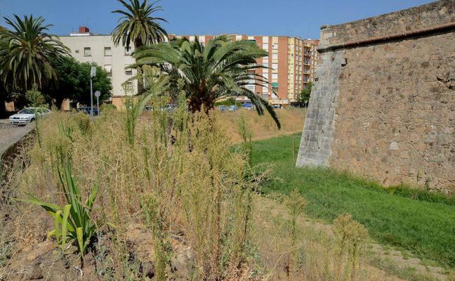 Las malas hierbas siguen creciendo alrededor del baluarte de Santiago