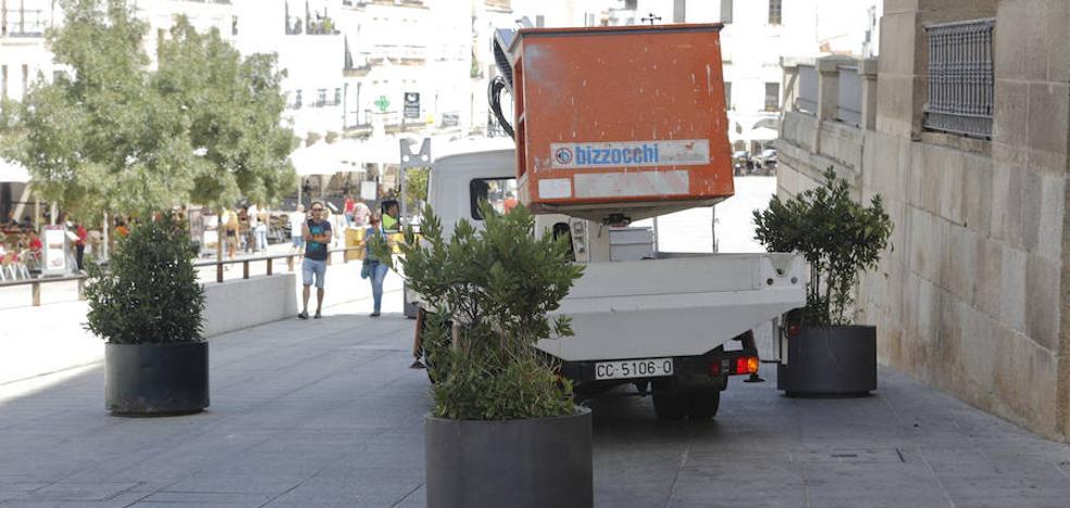 Grandes maceteros en vías peatonales evitarán atentados con vehículos