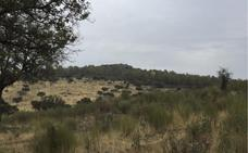 Cosentino restaurará la cantera agotada de Castañar antes de abrir la nueva mina