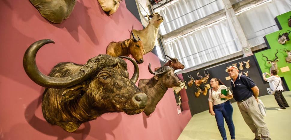 Extremadura defiende la caza y la pesca por su impacto económico en Feciex