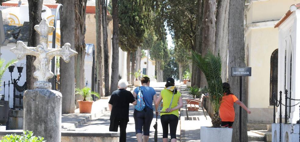 El cementerio de Mérida suspende en materia de accesibilidad