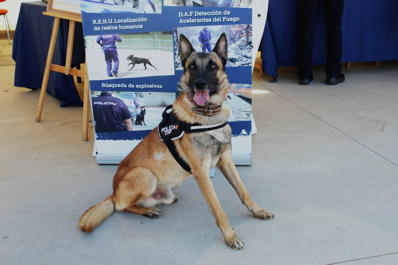 Exposición de la Policía Nacional en Memoria de Menacho