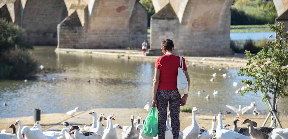 Badajoz, con 36,9 grados, encabeza la lista nacional de temperaturas