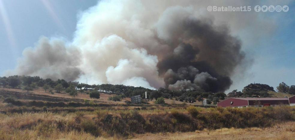 El Infoex controla un incendio forestal cerca de Alburquerque