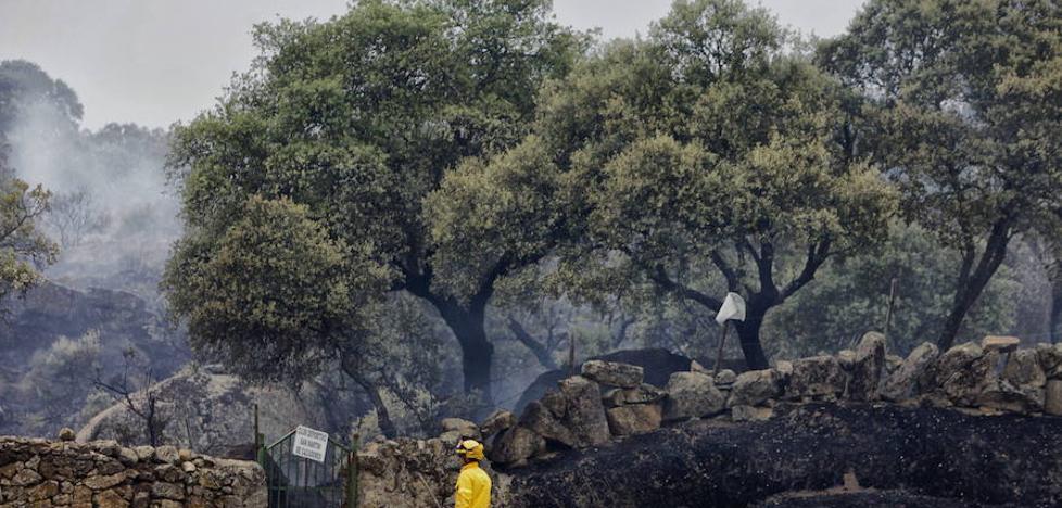 Comienza la época de peligro bajo de incendios forestales