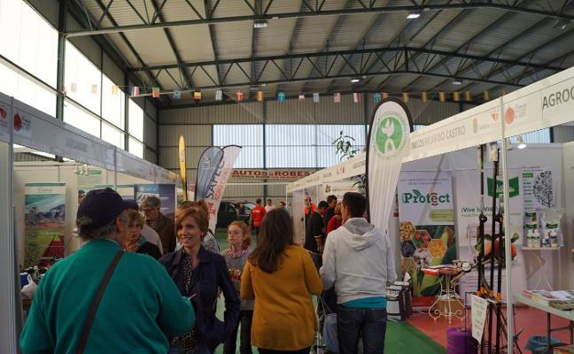 Cientos de visitantes en la feria de productores en Cabrero