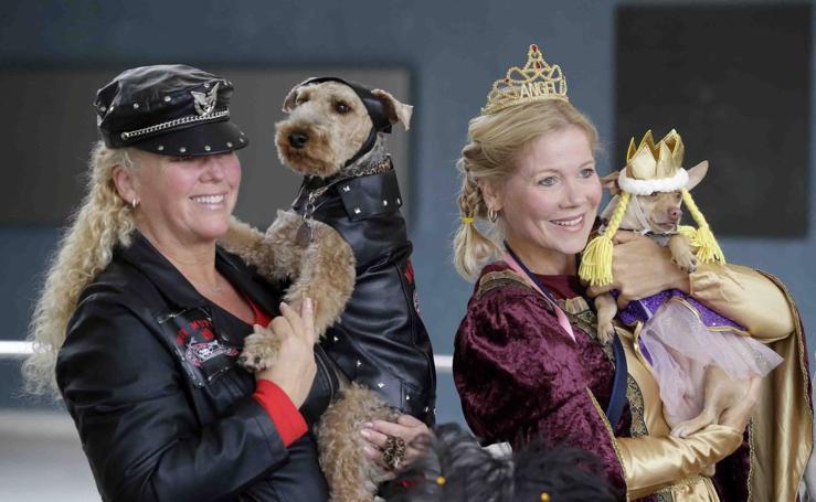 Tercer desfile anual de Halloween de Mascotas