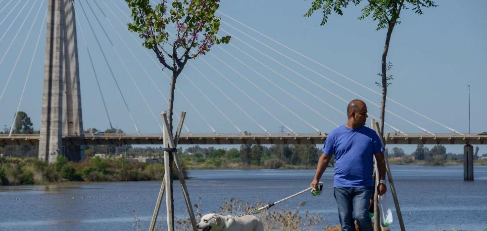 La obra del parque canino junto al río se hará en un mes y estará lista antes de que acabe el año