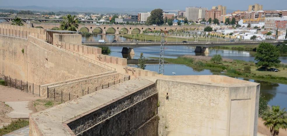 Los socialistas critican que solo se inviertan 20.000 euros en limpiar la Alcazaba