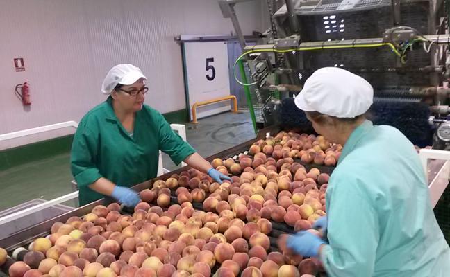 Extremadura registra cifras «récord» de exportaciones
