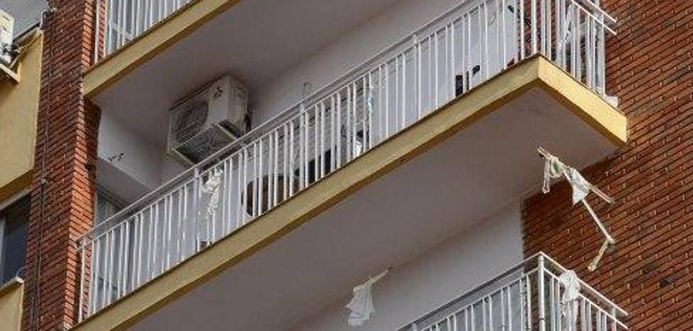 Reclaman una actuación urgente contra la superpoblación de palomas en Pardaleras