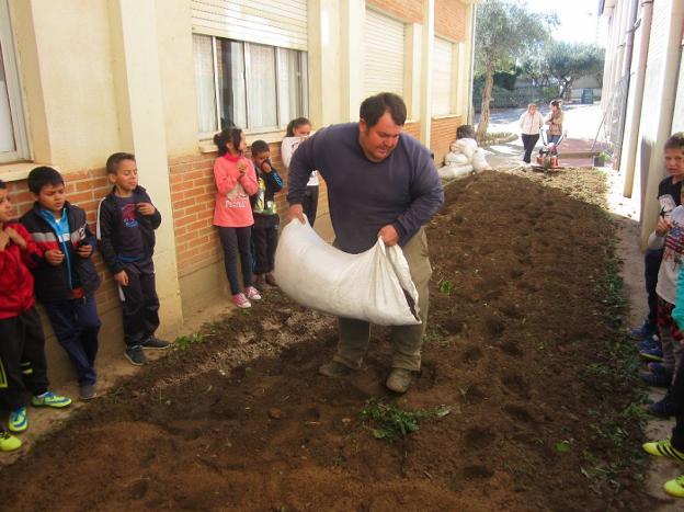 Ismael F. Hernández, abonando la tierra. :: p. d. cruz/