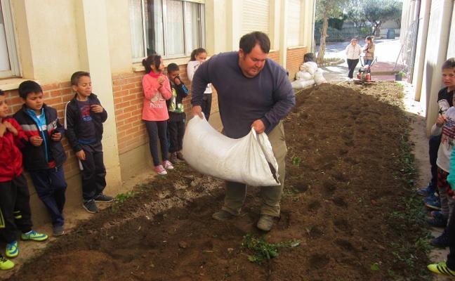 El colegio Gregoria Collado de Jaraíz pone en marcha un huerto escolar