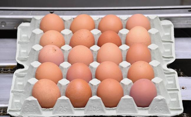 El sector del huevo saca partido a las crisis sanitarias