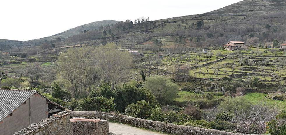 La Junta prohíbe la quema de restos en el Valle de Jerte y la Sierra de Gata