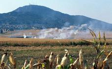 SEO/BirdLife denuncia descontrol en la quema de rastrojos en varias zonas