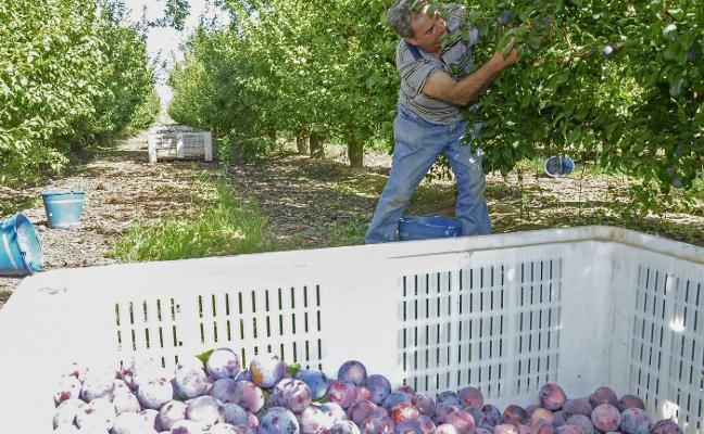 La región tendrá un registro de las entidades de calidad de los productos agroalimentarios