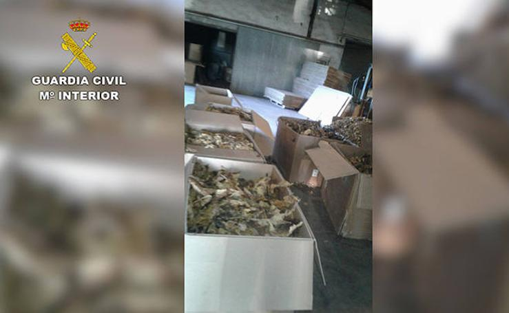 Incautación de 250 toneladas de tabaco
