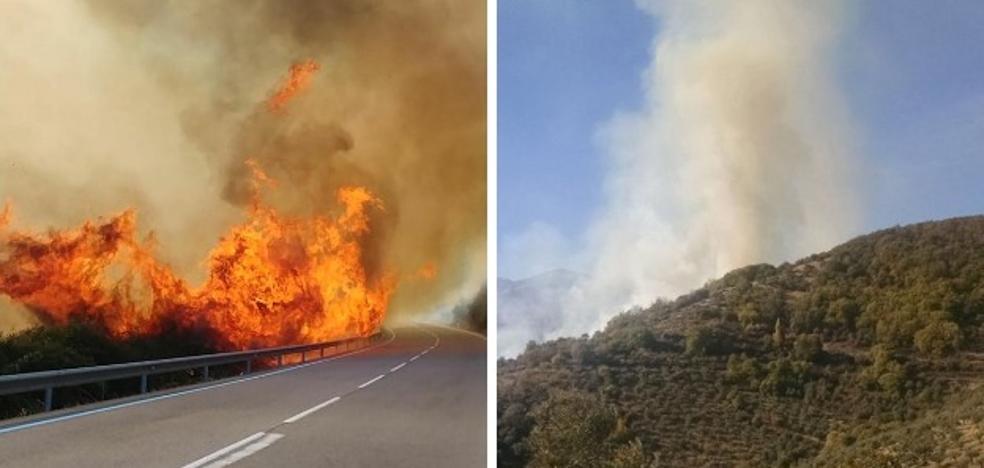 Medios terrestres y un helicóptero trabajan en un incendio forestal en Guadalupe