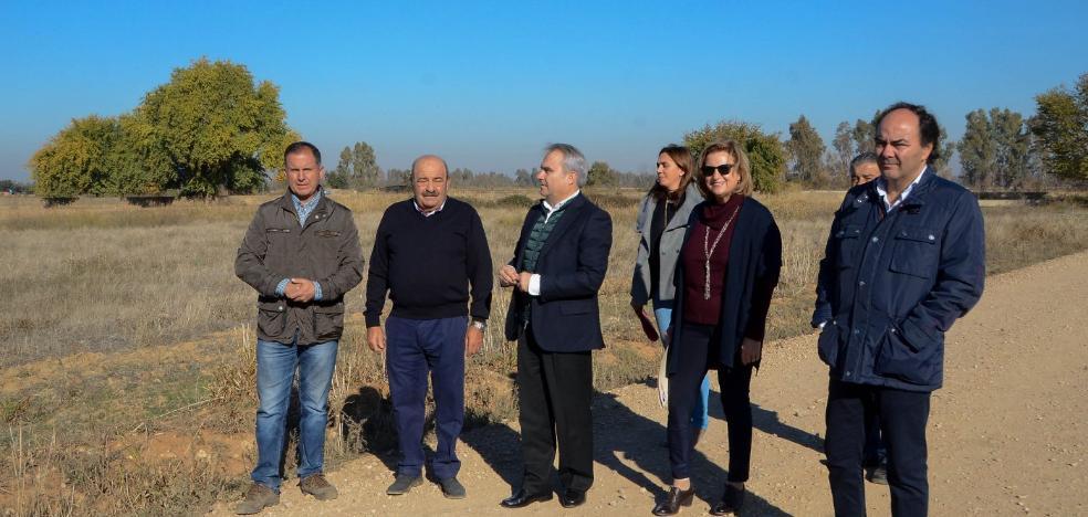 La Inmobiliaria de Badajoz invertirá 1,7 millones en el polígono de Balboa