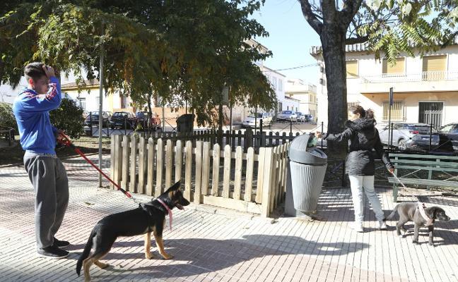 Cáceres gasta al año 50.000 euros en bolsas para heces de perros