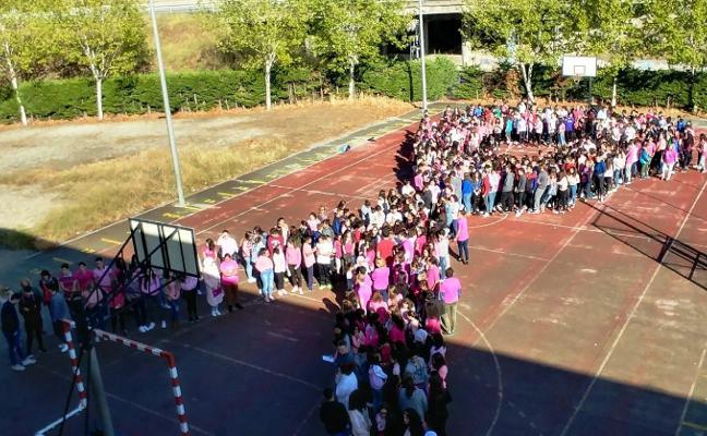 Una decena de estudiantes opta a los Premios a la Excelencia en Navalmoral
