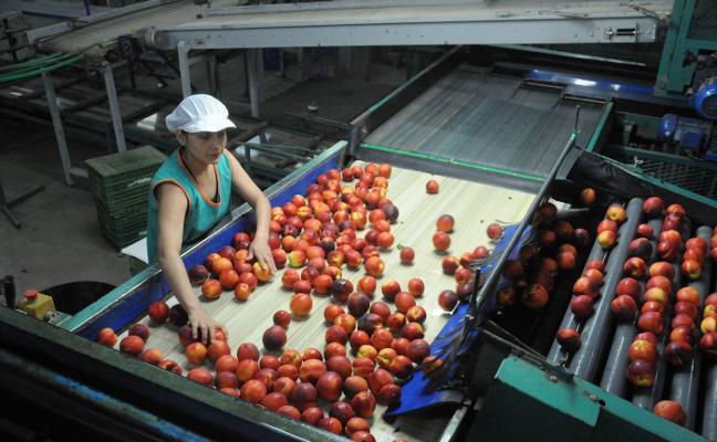 España es el cuarto país que más contribuyó a la producción agrícola de la UE en 2016
