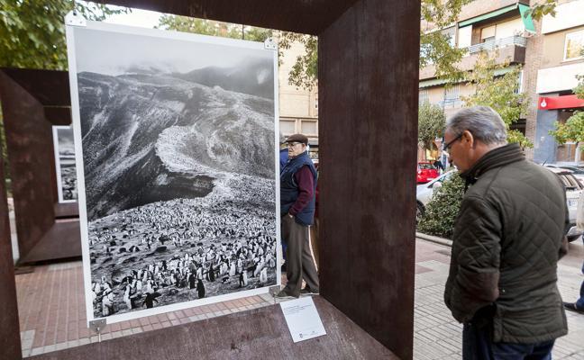 Exposición 'Génesis' de Sebastiao Salgado en Cánovas