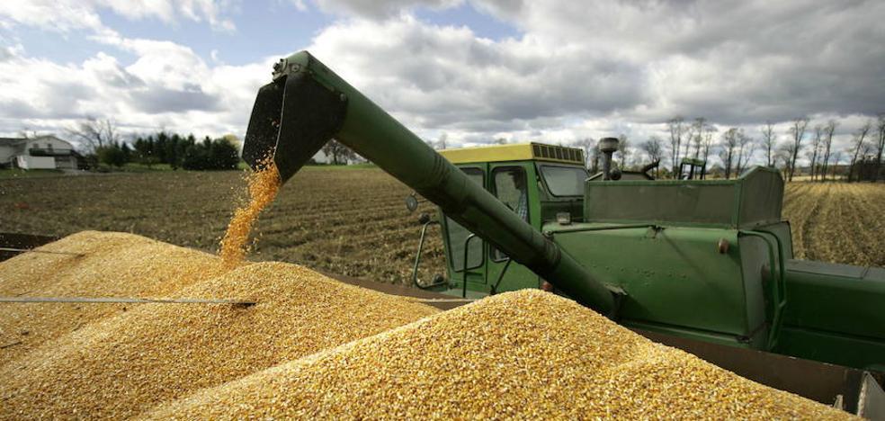 Piden al Gobierno español que imponga aranceles a la soja, el trigo y el maíz de EEUU