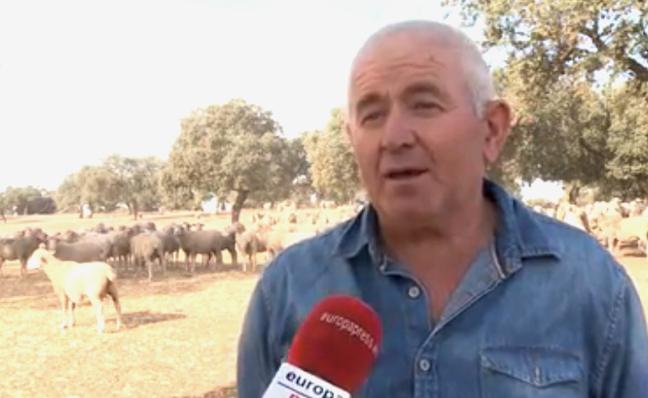 Agricultores y ganaderos señalan que la sequía podría suponer pérdidas de 449 millones