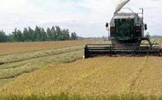 El borrador de la nueva PAC plantea topes en los pagos a los agricultores