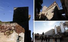 Diez edificios de la Ciudad Monumental de Cáceres se blindan a las palomas