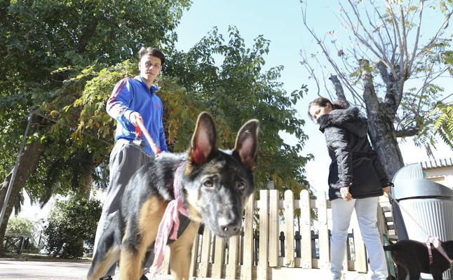 Natura 2000 pide al Ayuntamiento más zonas para poder tener los perros sueltos
