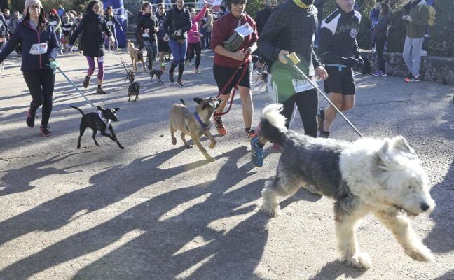 La carrera del Refugio San Jorge de Cáceres alerta sobre el abandono animal