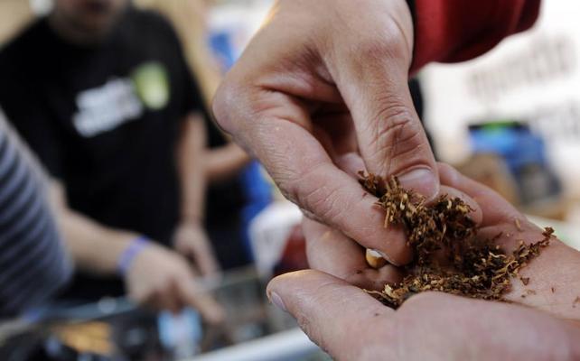 El Constitucional aborta el intento autonómico de legalizar los clubes de cannabis