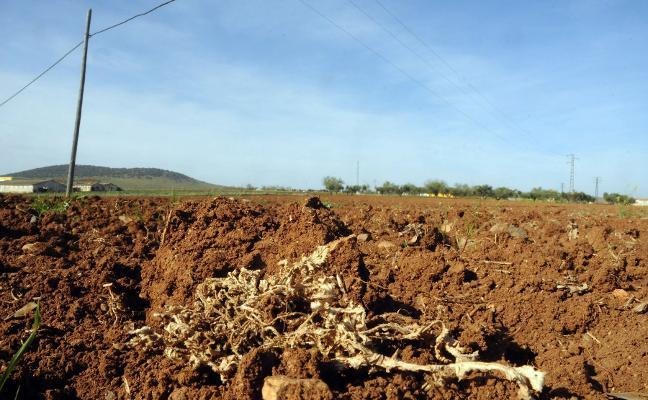 El Gobierno abre a información pública el cambio de normativa de los planes de sequía