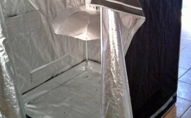 Desmantelan un invernadero de interior de marihuana en Talarrubias