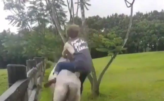 La ilusión de montar a caballo